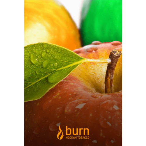 купить Burn - Three Apples 100 г
