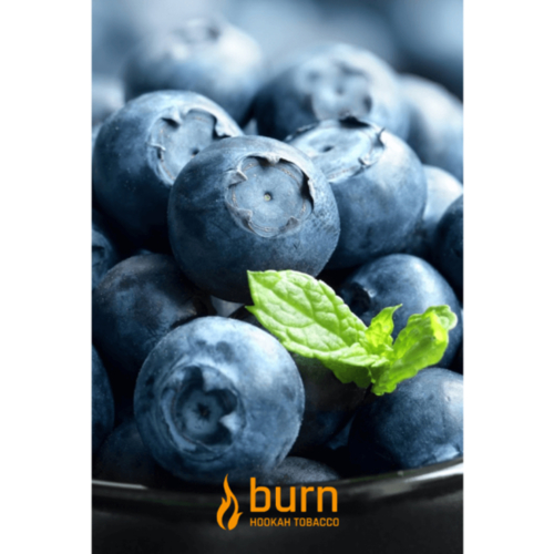 купить Burn - Blueberry Mint 100 г