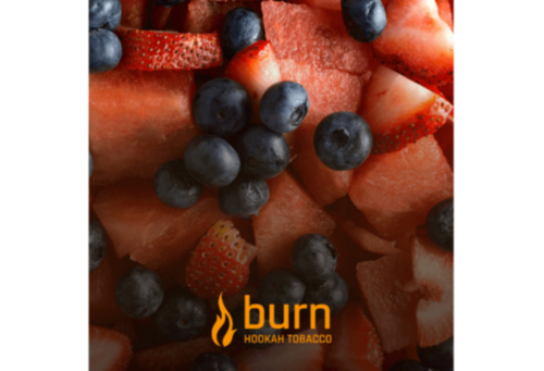 купить Burn - Berried Treasure 100 г