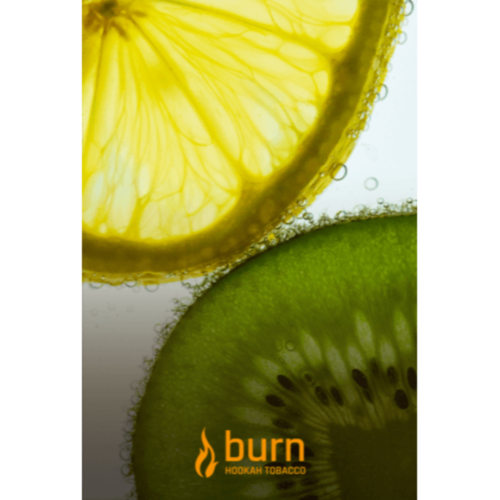 купить Burn - Kiwi Lemon 100 г